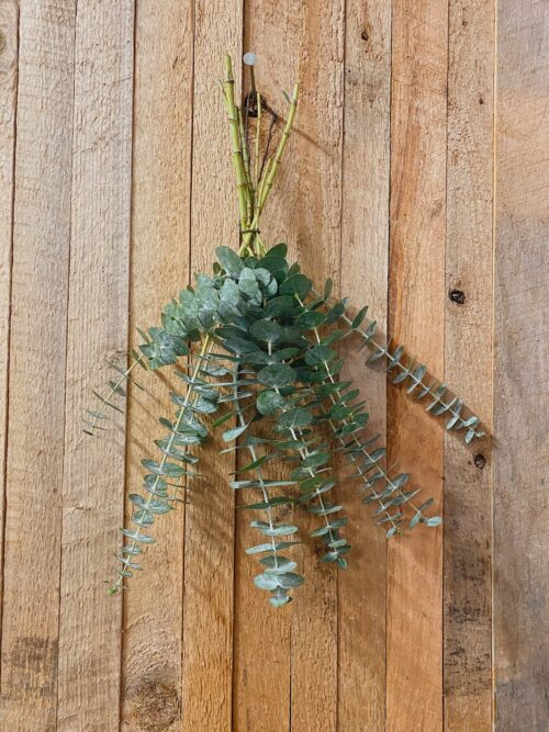 leafy wall hanging